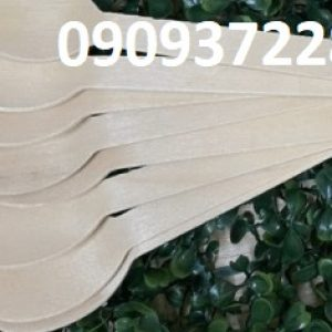 Muỗng gỗ