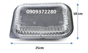 Hộp nhựa HT203