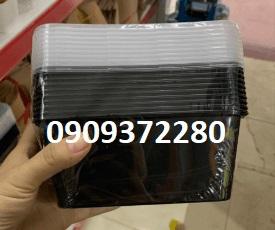 Hộp nhựa chữ nhật 1000ml
